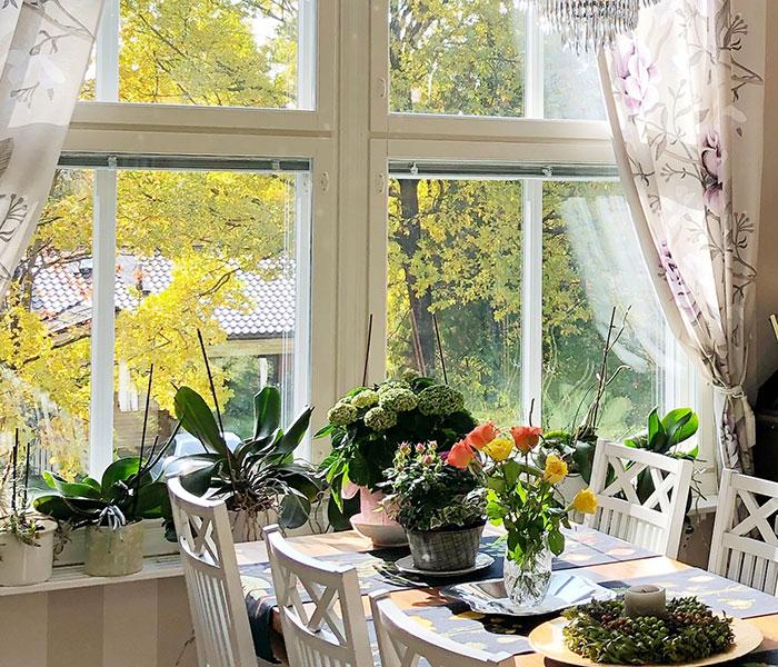 Clenix Oy ikkunanpesut